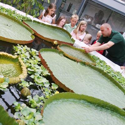 Durham Botanic Garden